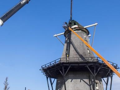 Nieuwe roeden voor De Zandhaas: 'De molen moet leven, die moet draaien'
