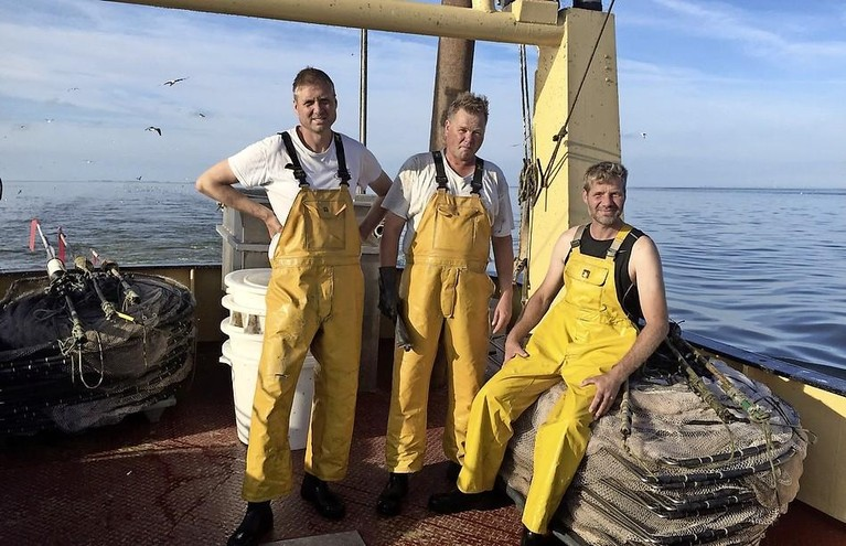 Herstel van de paling: meer jonge aal in IJsselmeer