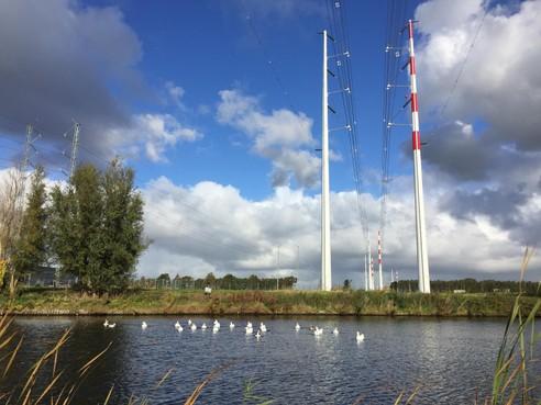 Groot datacentrum bij Rottepolderplein