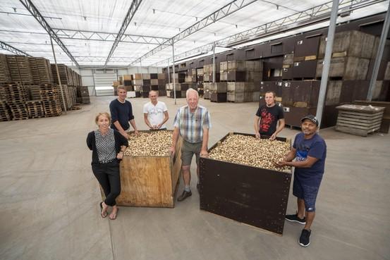 Loeren bij de boeren: 'Permanent schaken op meerdere borden'