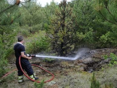 Brandweer weet nieuwe duinbrand in kiem te smoren