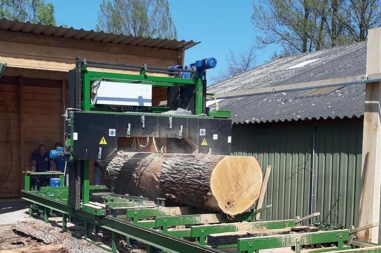 'Ja, van dik hout zaagt men planken, van boom tot botter'