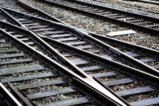 ProRail na oponthoud: 'Het lijkt wel dierendag op het spoor'