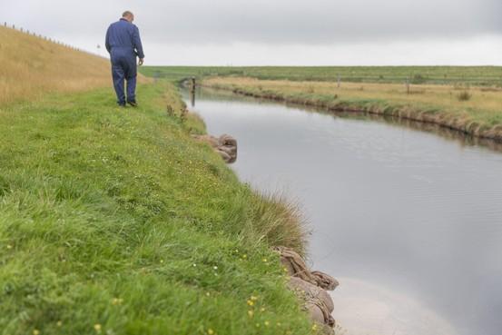 Texelse agrariërs bezorgd over kwel