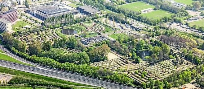 Overeenkomst tussen Bomenbond en Leidse begraafplaats: Rhijnhof mag kappen