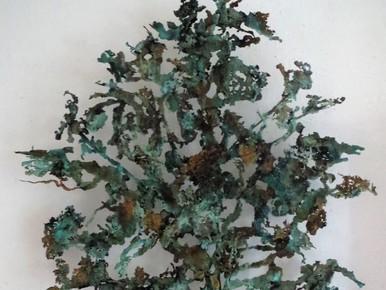 Groene Hart Kunstprijzen vallen in de regio