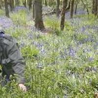 Boswachter Chris van der Vliet van Landschap Noord-Holland in stinsebos Het Wildrijk.