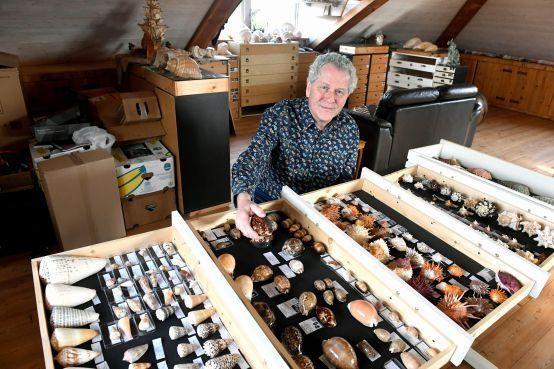 Frank Maartense heeft ruim drieduizend soorten schelpen: 'Bedreigd schelpdier moet je behandelen als een panda' [video]