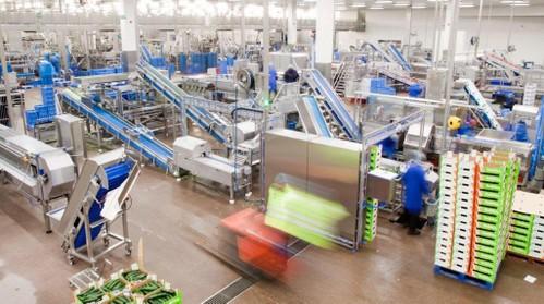 Vezet wil meedoen met project om enorme volumes restproducten groente en fruit te hergebruiken