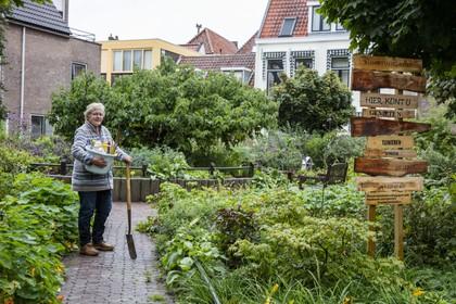 Biodivers paradijsje in Leiden te grondig gesnoeid