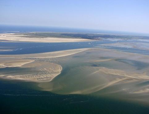 Mosselbanken in Waddenzee verdubbeld