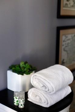 Controles op airbnb-verhuur in Waterland