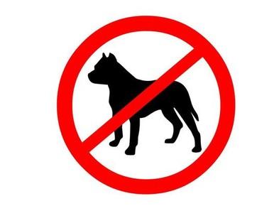 Rechter: 16 pitbulls mogen worden afgemaakt