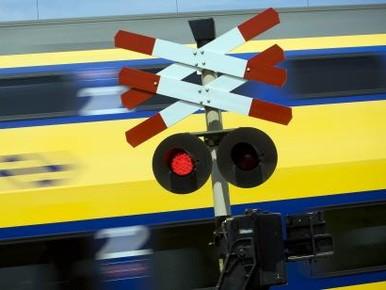 Boom op het spoor: geen treinen tussen Haarlem en Voorhout [update]