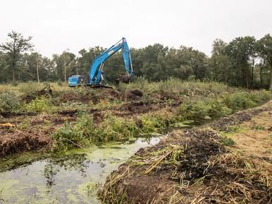 Strijd voor behoud laatste hoogveen in Soest