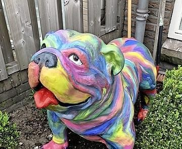 Kleurige hond gestolen uit voortuin in Wijk aan Zee