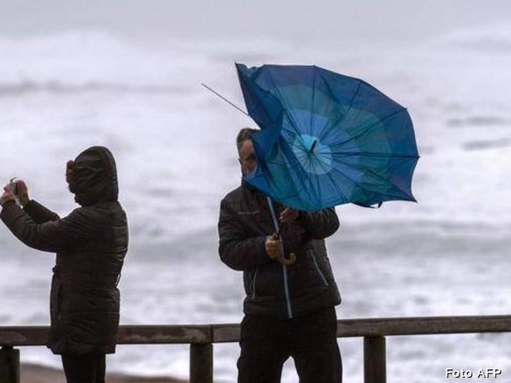 Winterstorm in beeld [fotoalbum]