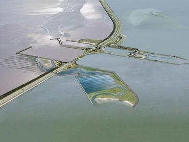 'Vismigratierivier bij Afsluitdijk weggegooid geld'