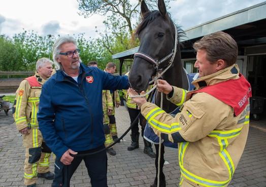 Manegehouder uit Krommenie schrijft boek met tips voor het redden van paarden