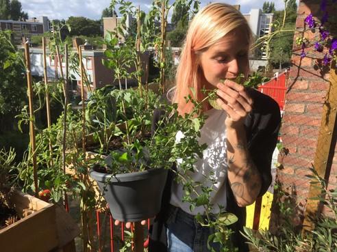 Plantenliefde 'gardenless gardener' brengt Leidenaars bijeen