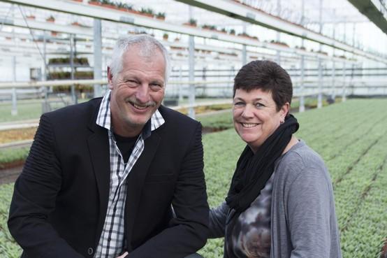 Vetplantkwekerij wil in 2020 vestigingen verhuizen naar Heerhugowaards glastuinbouwgebied Alton