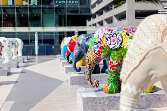 Laren dolblij met komst wereldberoemde olifantenparade