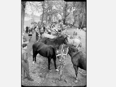 De paardenmarkt op het Adriaan Dortsmanplein/Promersplein in Naarden-Vesting.
