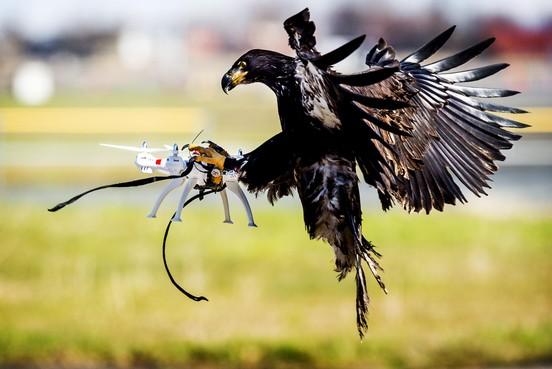 Nederland moet zich beter voorbereiden op drone-aanvallen