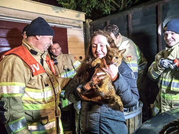 Brandweer redt kat uit schacht ondergrondse glascontainer in Lage Vuursche