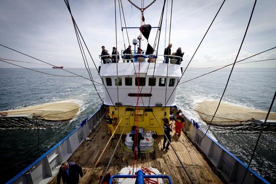 Straks andere vissoorten in warme Noordzee