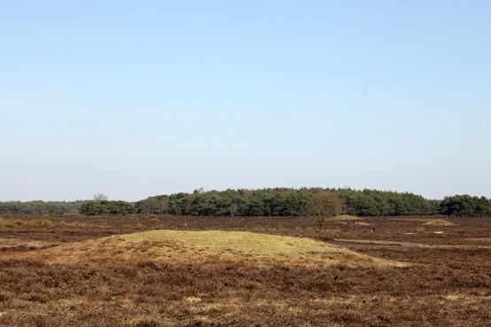 'Stel archeologiefonds in voor Gooi en Vechtstreek of per gemeente'