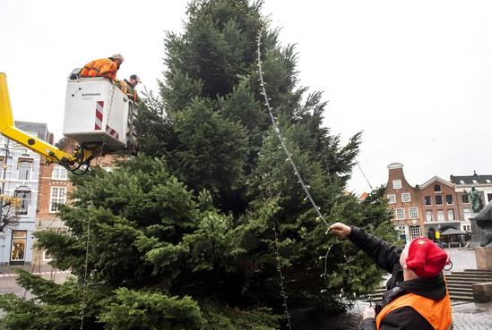Tienduizend lichtjes in de Haarlemse kerstboom
