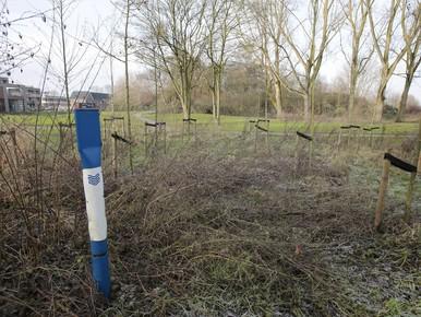 Zorg over vervuiling in oude vuilnisbelt van Baarn