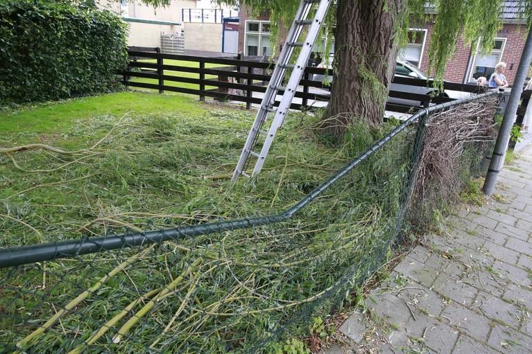 Man zwaargewond na val van tien meter bij snoeien boom in Spierdijk