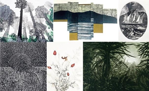Grafisch werk uit Bergen en Nieuw-Zeeland op één expositie