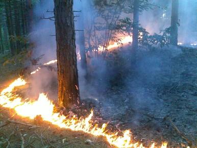 Code rood voor natuurbranden in Hollands Midden