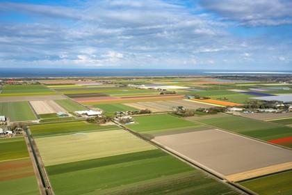 Het Noord-Hollandse bollengebied in vogelvlucht: een kleurrijk lappendeken [video]