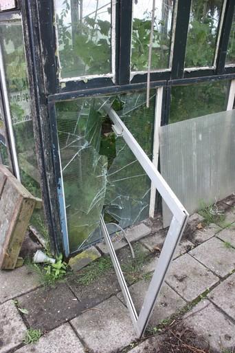 Vernielingen op tuincomplex in Assendelft: schade aan huisjes, meubilair en kassen