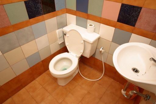 Trots Haarlem start petitie voor meer openbare wc's