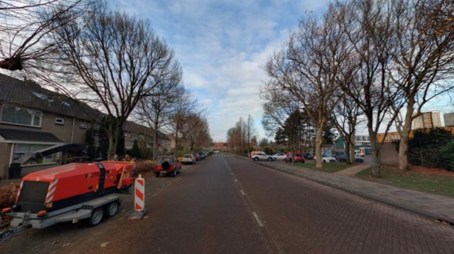 Herinrichten Melis Stokelaan Uitgeest: 'U ziet: de bomen groeien het riool in'