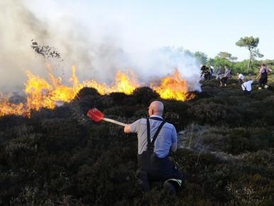 Duinbranden op conto van Bergen