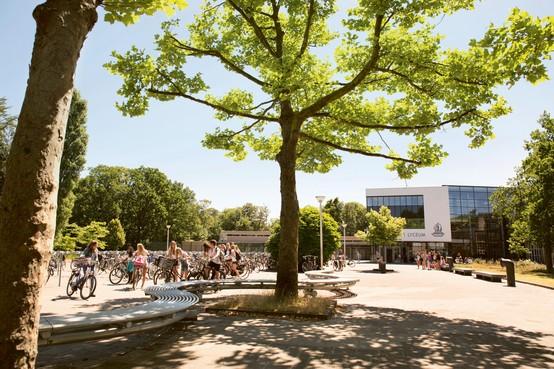 Rijnlands Lyceum Wassenaar: van veertig kinderen van expats na de zomer tot 360 over enkele jaren