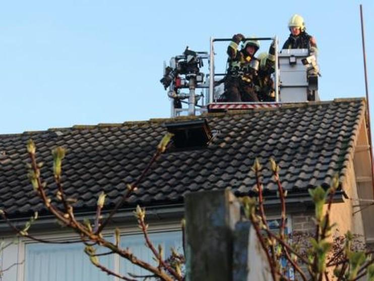 Wietkwekerij ontdekt bij woningbrand in Dirkshorn