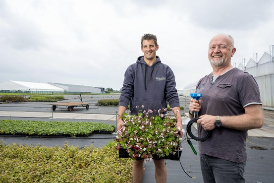 Open Kwekerijdag Boskoop met groene muren en daken