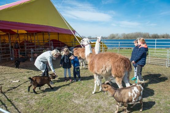 Circus Bossle strijkt dit jaar weer neer in Landsmeer