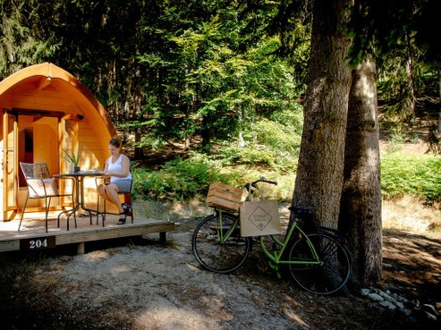 Heemskerker mag camping niet uitbreiden en dierenpension starten