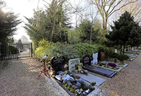 Stelling: Privatiseer de gemeentelijke begraafplaatsen