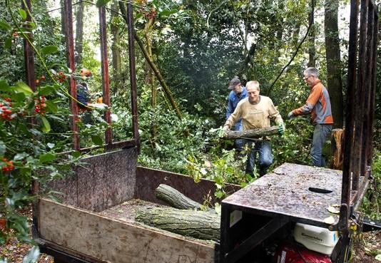 Scouts Santpoort-Zuid krijgen opgeknapt bos 'om dingen te doen die thuis niet kunnen'