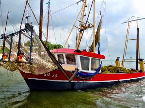 Nieuwe start maaien in Marker- en IJmeer