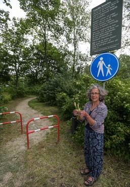 Marcella de Kroon uit Enkhuizen pleit voor ander maaibeleid gemeente om insecten te sparen: 'Dit is moord op vlinderstand'
